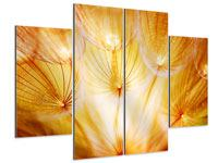 4 Piece Aluminium Print Close Up Dandelion In Light