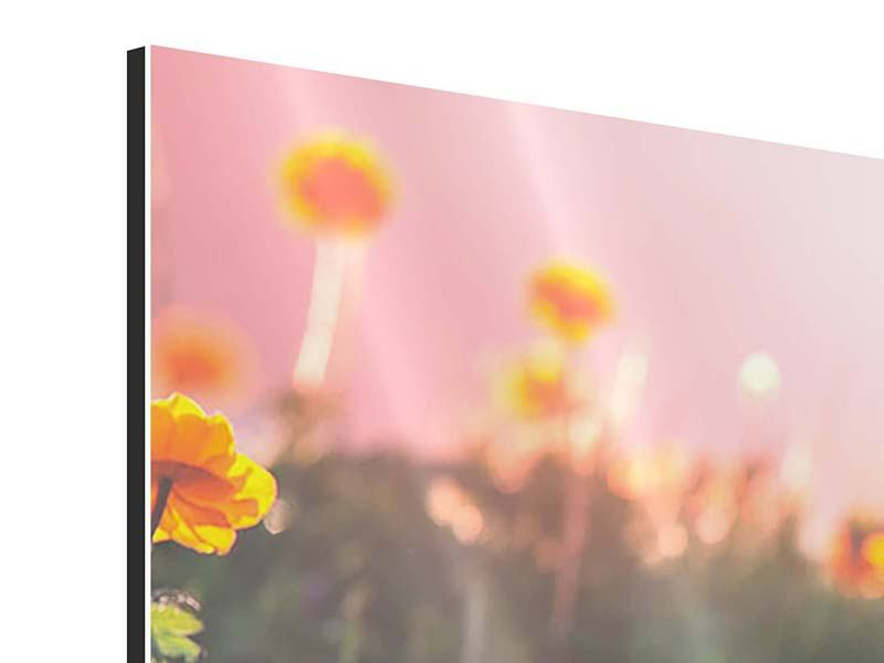 Modern 5 Piece Aluminium Print The mountain Meadow
