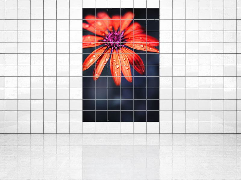 Tile Print Colored Daisy