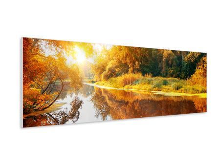 Panoramic Forex Print Forest Reflection In Water