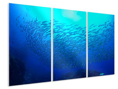 3 Piece Forex Print Fish World