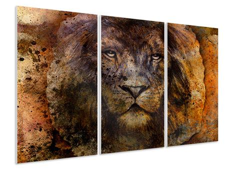 3 Piece Forex Print Portrait Of A Lion