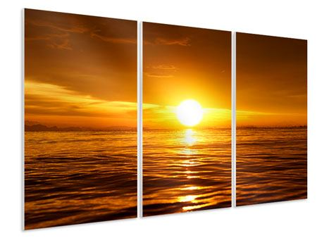 3 Piece Forex Print Glowing Sunset On The Water