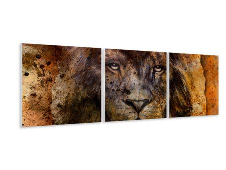 Panoramic 3 Piece Forex Print Portrait Of A Lion