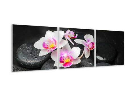 Panoramic 3 Piece Forex Print Feng Shui Orchid Zen