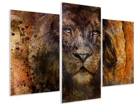 Modern 3 Piece Forex Print Portrait Of A Lion