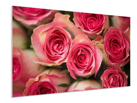Forex Print Rose Love