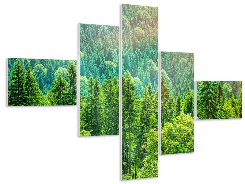 Modern 5 Piece Forex Print The Forest Hill