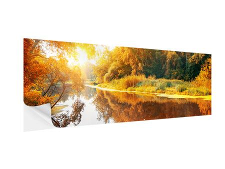 Panoramic Self-Adhesive Poster Forest Reflection In Water