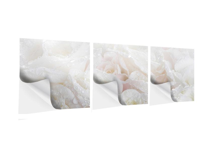 Panoramic 3 Piece Self-Adhesive Poster White Roses In The Morning Dew