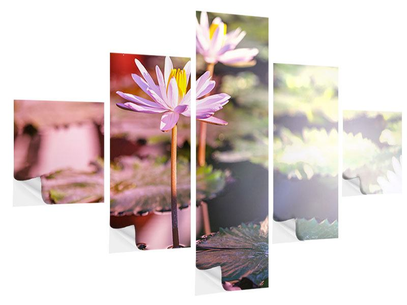 5 Piece Self-Adhesive Poster Lilies In Pond