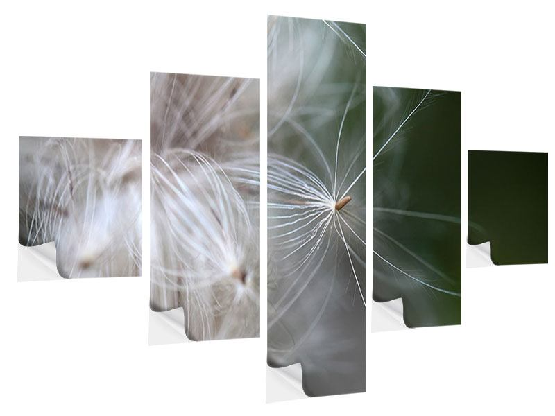 5 Piece Self-Adhesive Poster Close up Flowers Fibers