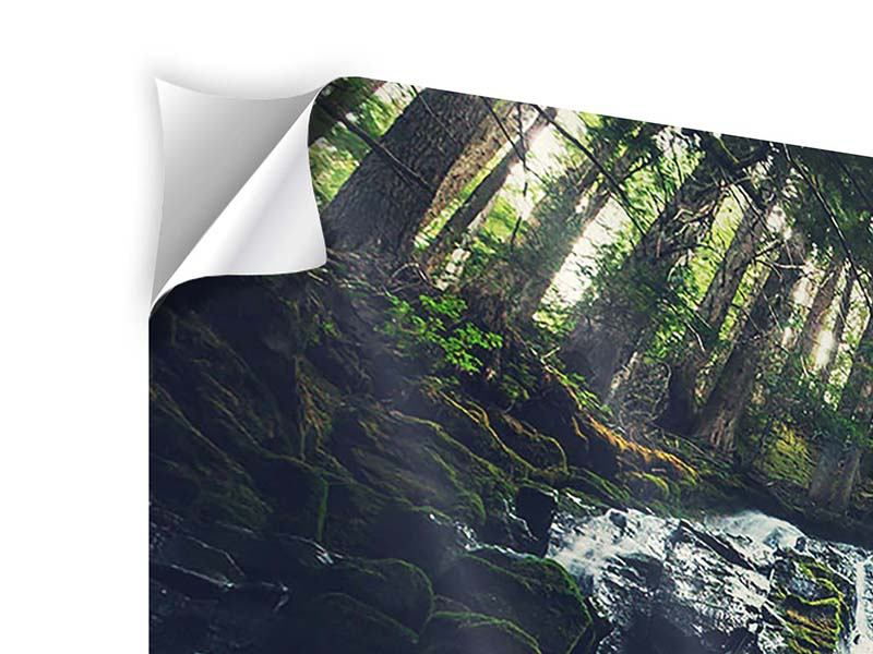 5 Piece Self-Adhesive Poster Feng Shui & Waterfall