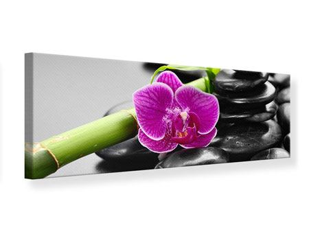 Panoramic Canvas Print Feng Shui Orchid