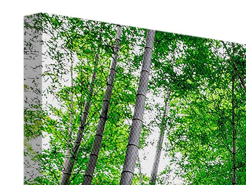 Modern 5 Piece Canvas Print Bamboo Forest