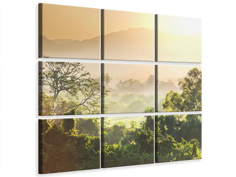 9 Piece Canvas Print Light Show In forest