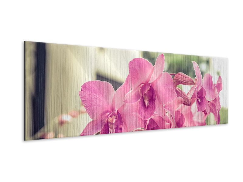 Panoramic Metallic Print A Window Seat For Orchids
