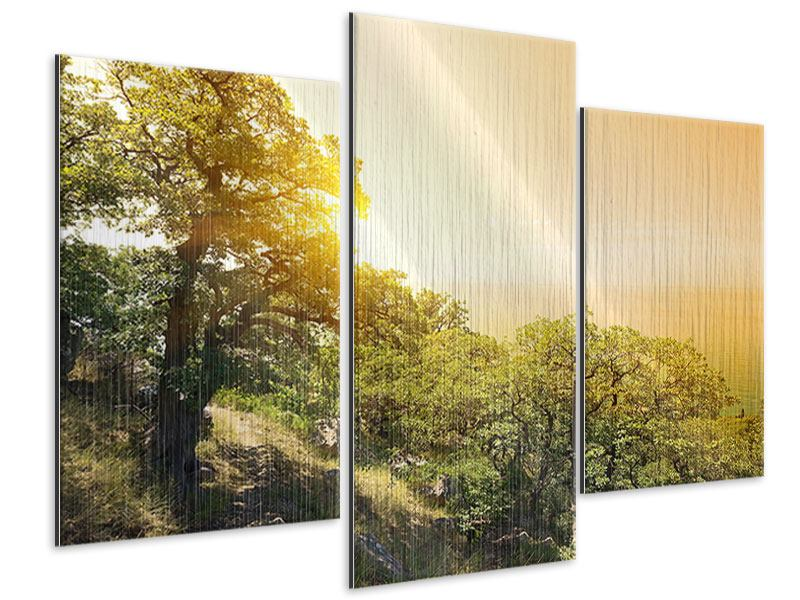 Modern 3 Piece Metallic Print Sunset In Nature