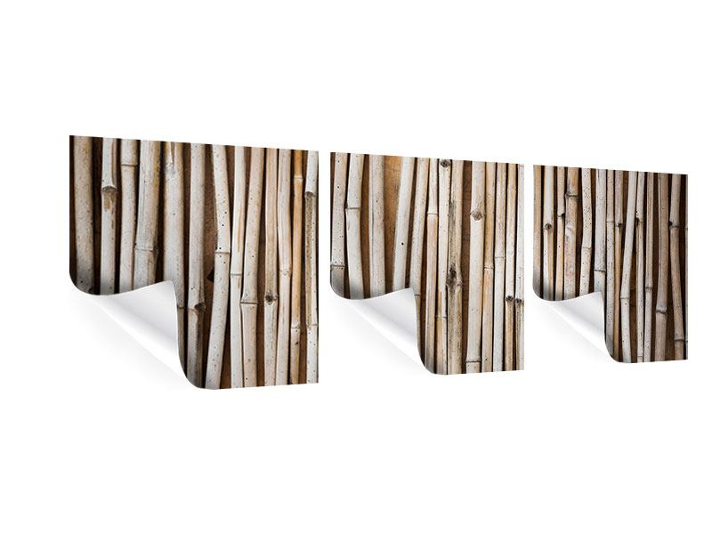 Panoramic 3 Piece Poster Dried Bamboos